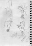 Sketch1 21
