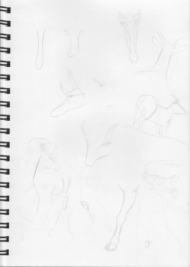 Sketch1 32